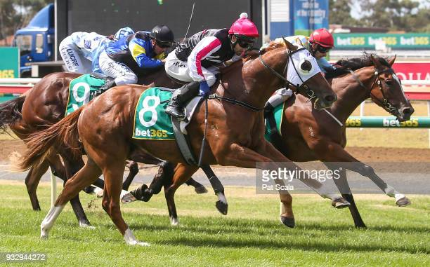 Spring Choice ridden by James Winks wins the Milana's Lingerie @ Swimwear Boutique 3YO Maiden Plate at Geelong Racecourse on March 17 2018 in Geelong...
