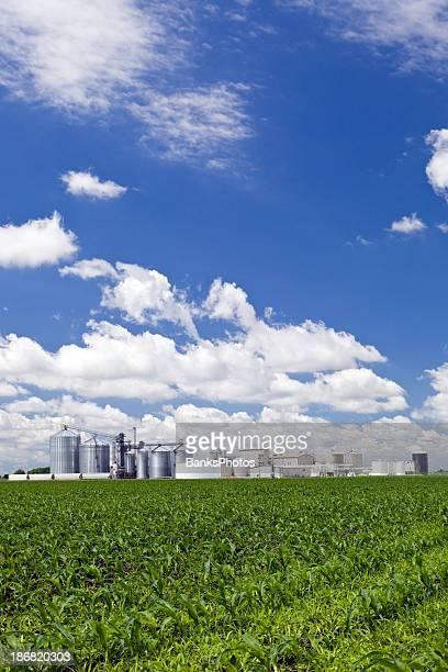 スプリング Cornfield 、エタノール Biorefinery の背景