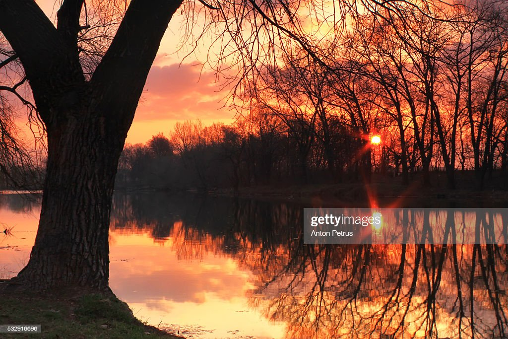 Spring Dawn on a small lake : Stock Photo