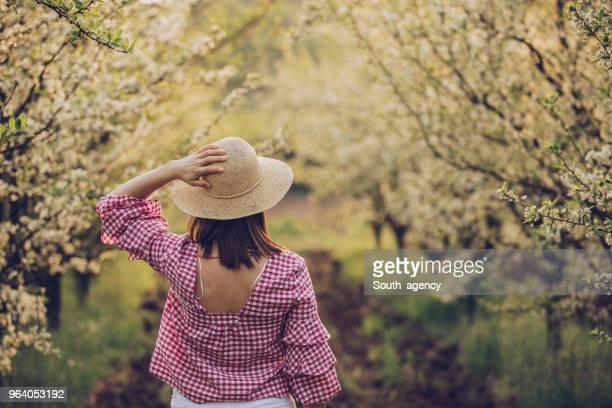 dia de primavera em pomar - charmoso - fotografias e filmes do acervo