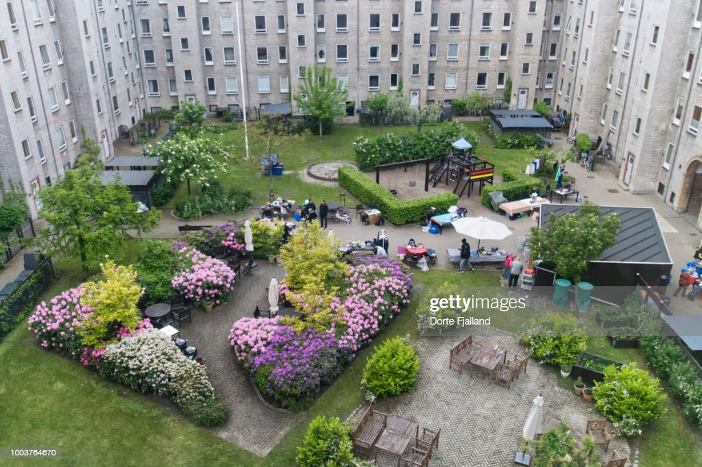 Spring day in the comunal yard with blooming rhododendrons and a flea market : Foto de stock