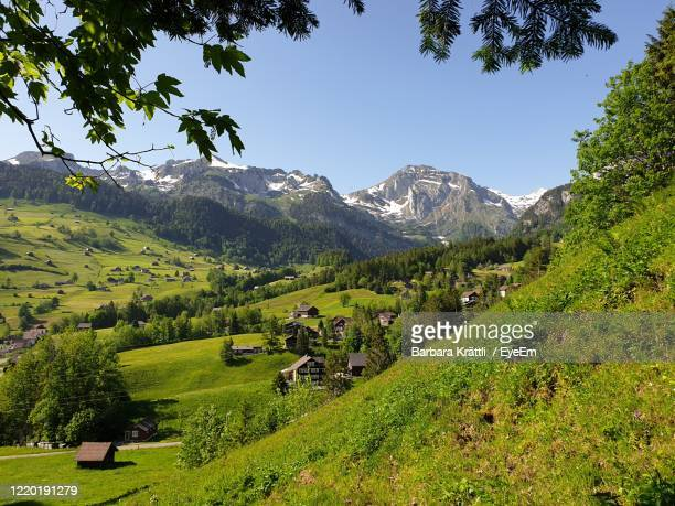 spring day in the rural mountain valley of toggenburg with the snow-capped peaks. scenic view, natur - natur stock pictures, royalty-free photos & images