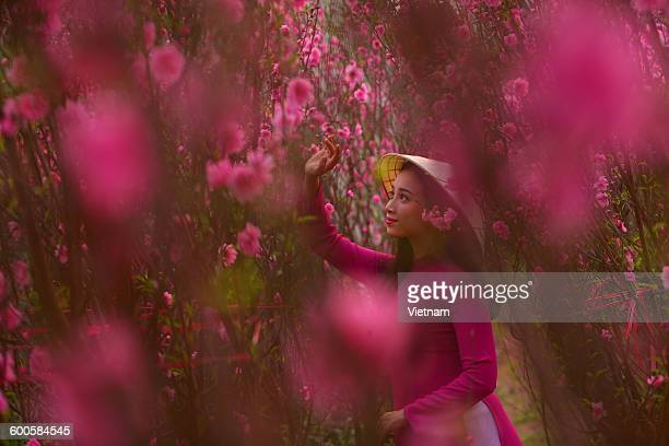 spring eyes - peach blossom stock pictures, royalty-free photos & images