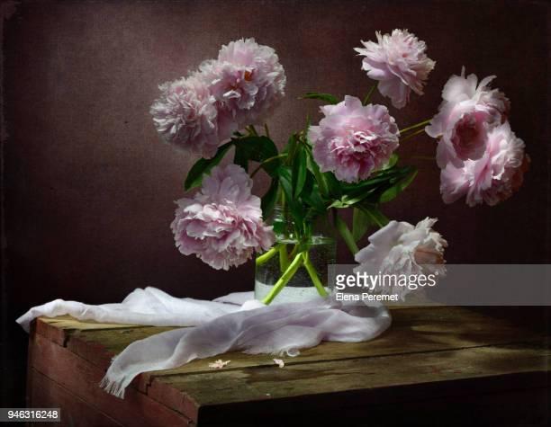 spring floral still life with peonies - elena blume stock-fotos und bilder