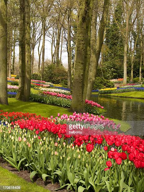 spring flower garden - garden of eden old testament stock photos and pictures