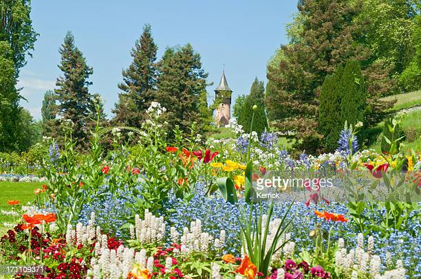 spring flowers at island mainau germany - bodensee stock pictures, royalty-free photos & images