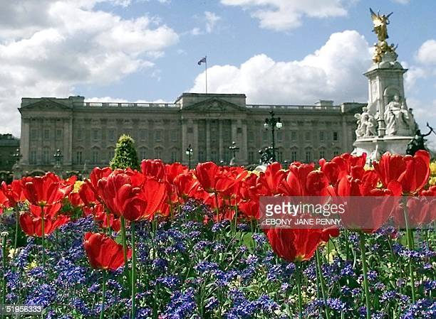Spring flowers bloom in the glory of rare sunshine at Buckingham Palace 04 May 2001 The last twelve months have seen the wettest since records begun...