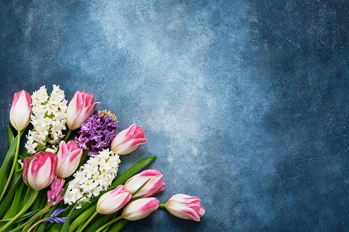 Spring flowers bouquet on blue background. Top view, copy space. Greeting card. 1136367469