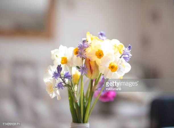 spring flowers bouquet - mazzi fiori di campo foto e immagini stock