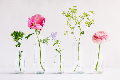 Spring flowers in glass vases - gettyimageskorea