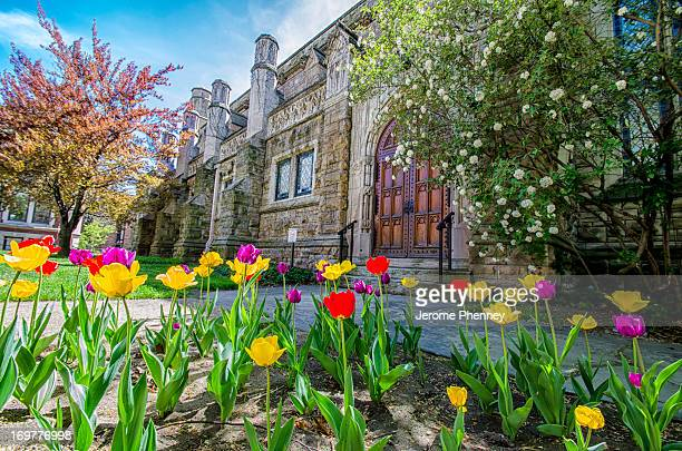 CONTENT] Spring Flowers outside Gund Hall at Case Western Reserve Universtiy