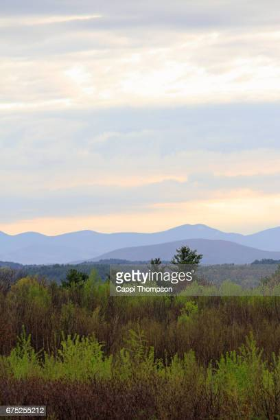 spring forest and mountains in sanbornton, new hampshire - cappi thompson stock pictures, royalty-free photos & images