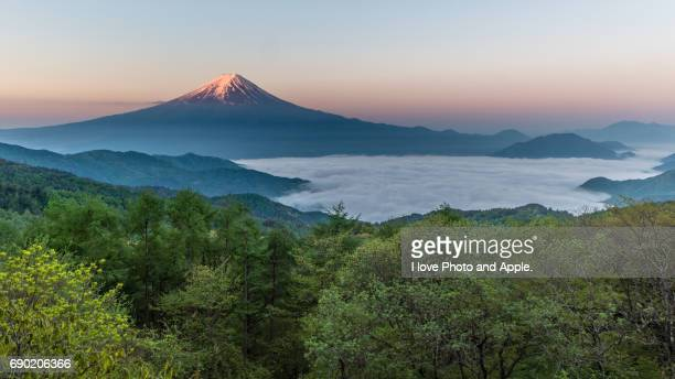 spring fuji morning scenery - 五月 ストックフォトと画像