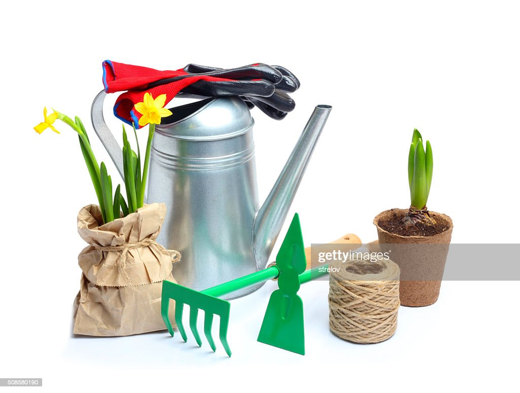 Spring Garden Tools isolated white background : Bildbanksbilder