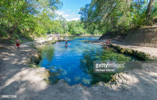 spring head at lafayette blue springs state park - florida sinkhole stock photos and pictures