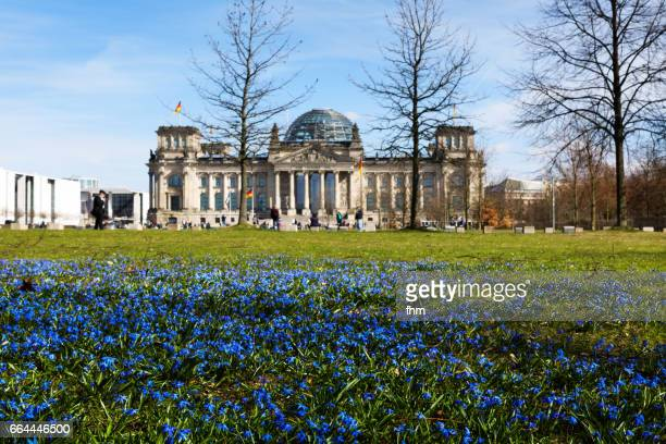 Spring in Berlin - spring flowers with Reichstag building in the background (Berlin, Germany)