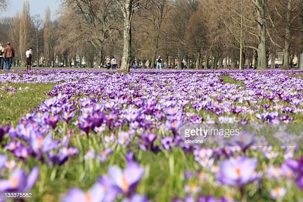 Spring in Düsseldorf