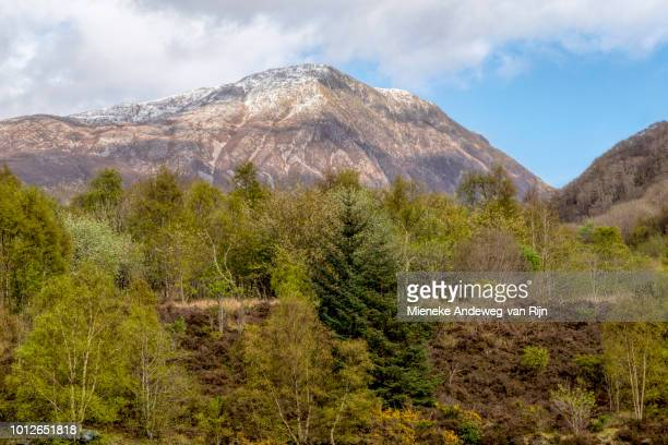 Spring in Glen Coe, a glen of volcanic origins, in the Scottish Highlands, Scotland, United Kingdom.