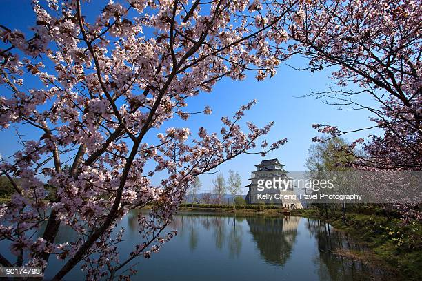 spring in japan - hokkaido stock pictures, royalty-free photos & images