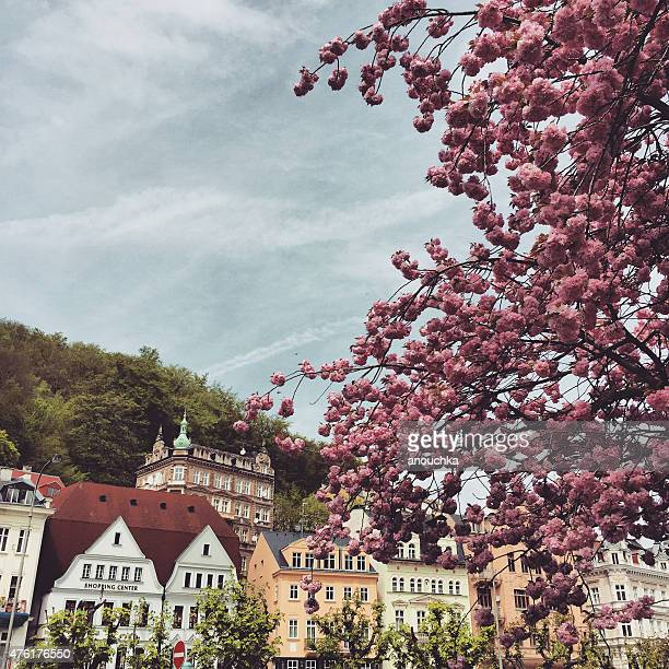 spring in karlovy vary, czech republic - karlovy vary stock pictures, royalty-free photos & images