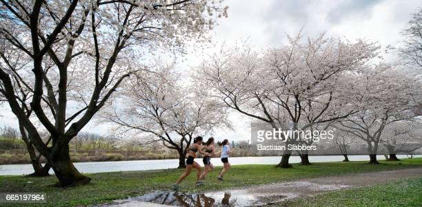Spring in Philadelphia, PA