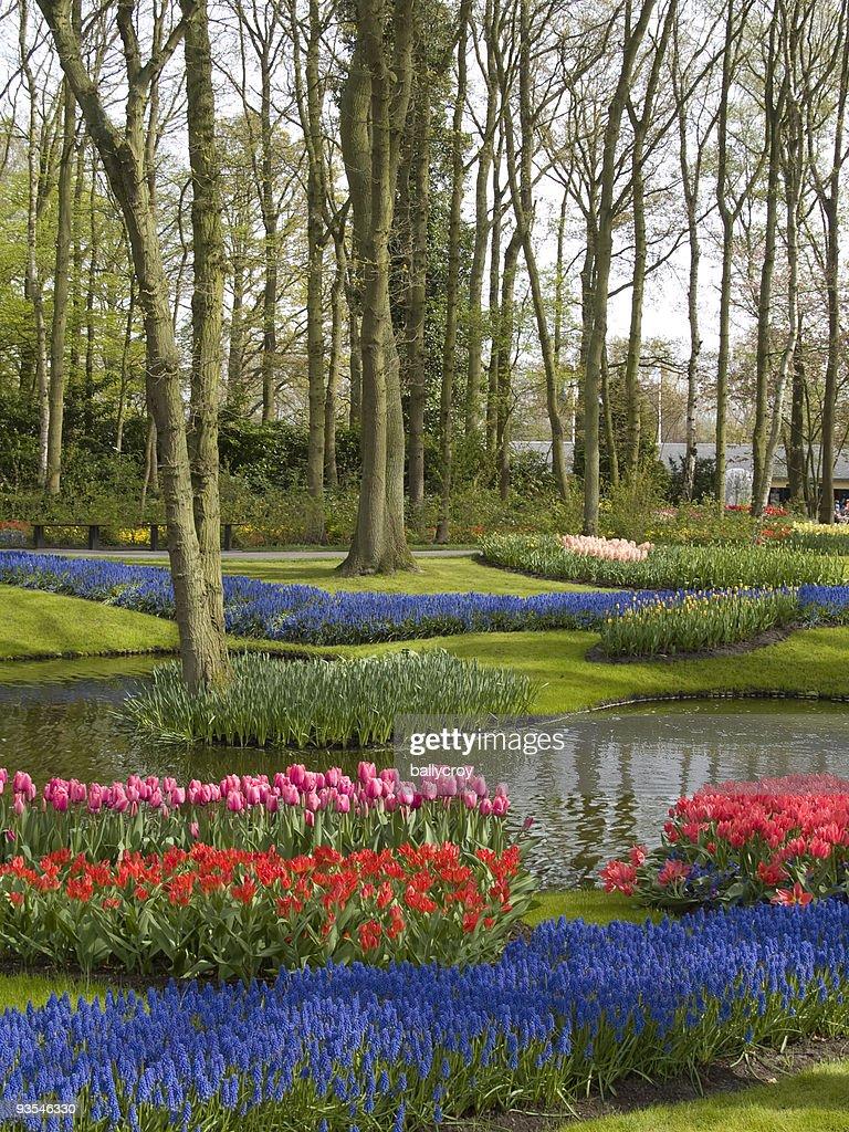 春の公園の : ストックフォト