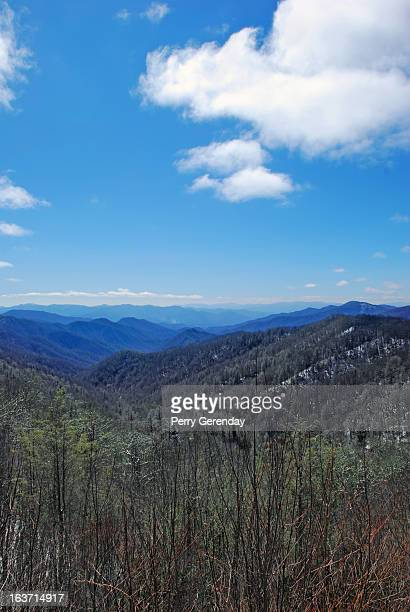 spring in the smoky mountains - newfound gap stock photos and pictures