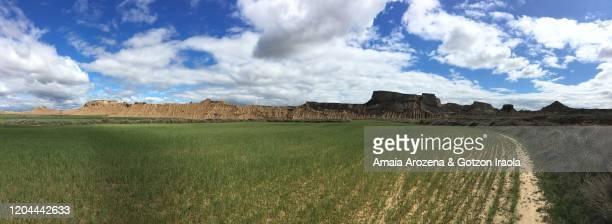 spring landscape in bardenas reales, navarre - pinnacle peak bildbanksfoton och bilder