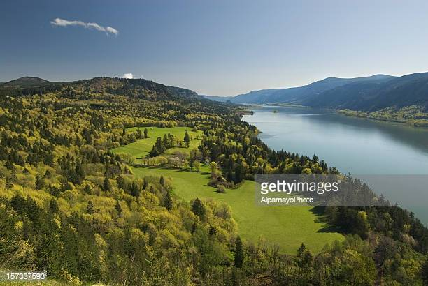 spring landscape - columbia river gorge stock pictures, royalty-free photos & images