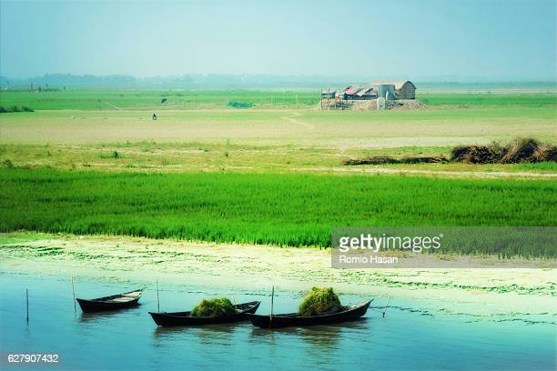 spring landscape - bangladesh village stock photos and pictures