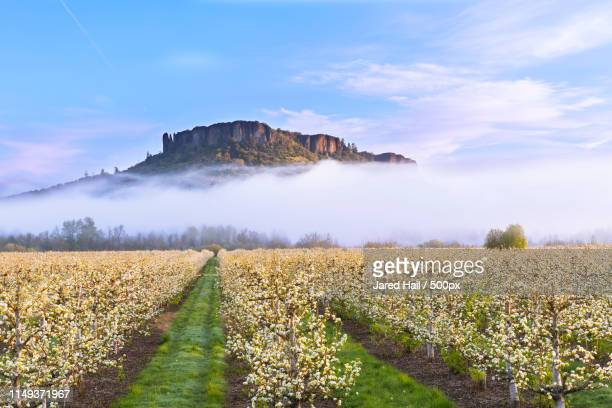 spring morning at table rock - medford oregon stock photos and pictures