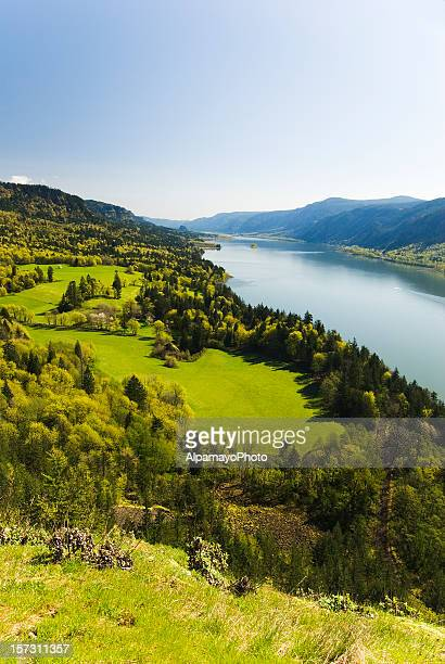spring morning landscape - columbia river gorge stock pictures, royalty-free photos & images