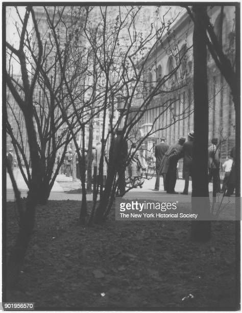 Spring New York Public Library view from budding trees New York New York 1929