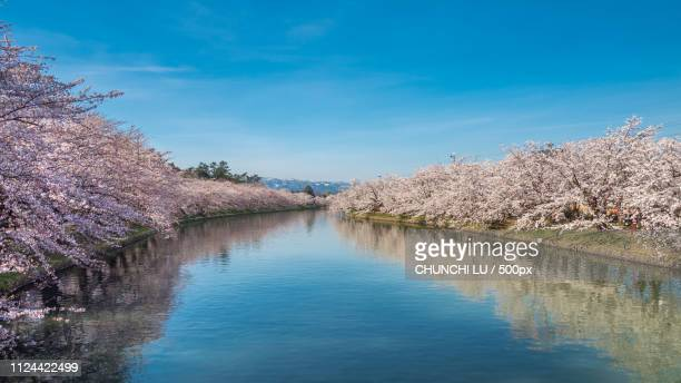 spring of northeast japan - iwate prefecture stock pictures, royalty-free photos & images