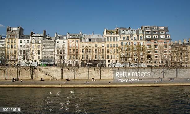 spring on the banks of the river seine in paris - seine stockfoto's en -beelden