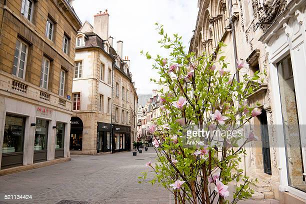 Spring on the streets of Dijon, France