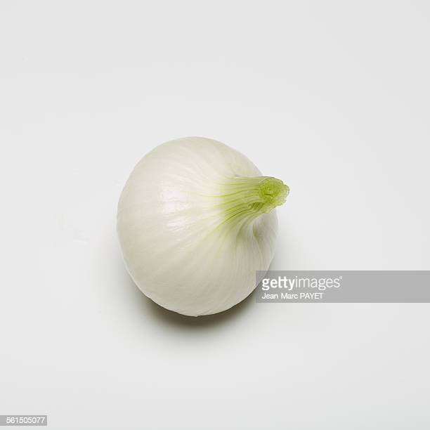 spring onion isolated on white background - jean marc payet stockfoto's en -beelden