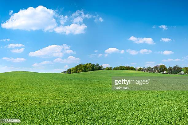 spring panorama 46mpix xxxxl - meadow, blue sky, clouds - green stock pictures, royalty-free photos & images