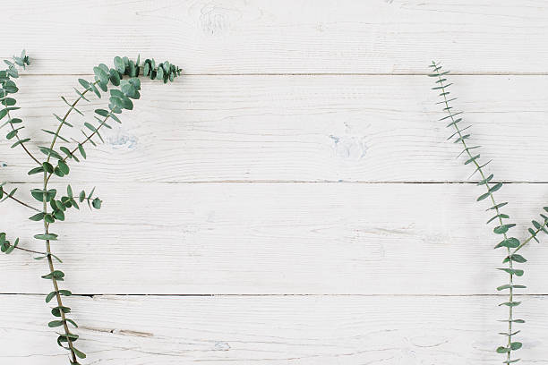 Free flowers background images pictures and royalty free stock garden flowers over wood spring plant over white wooden background mightylinksfo Images