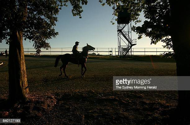 Spring Racing Carnival 2006 Jim Byrne rides Ice Chariot 17 October 2006 SMH Picture by PAT SCALA