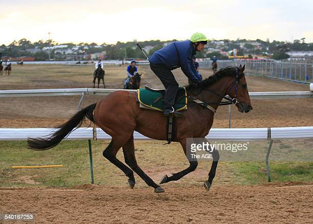 Spring Racing Carnival 2006 Trainer Brian Mayfield Smith's Melbourne Cup runner Maybe Better gallops at Flemington Racecourse 6 November 2006 THE AGE...