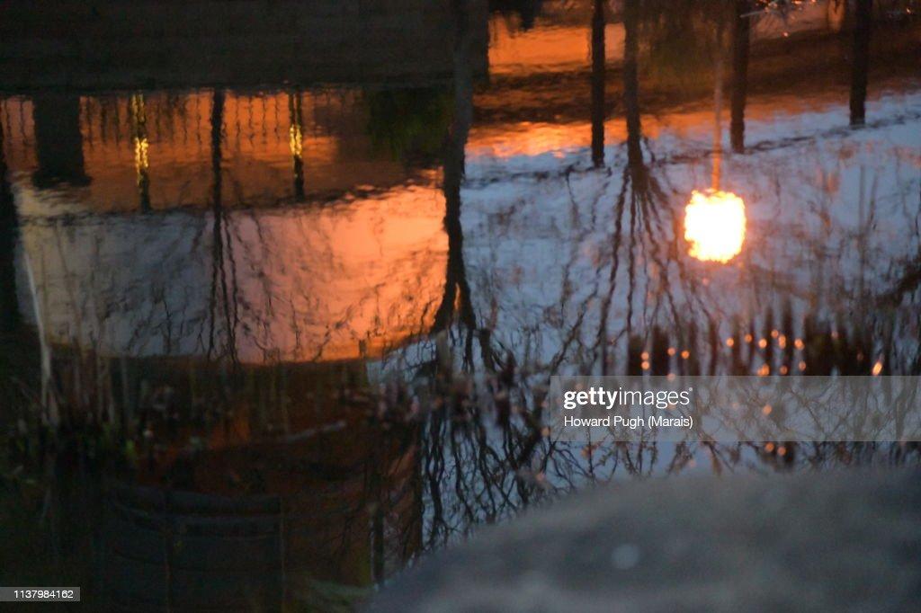 Spring Rays : Stock-Foto