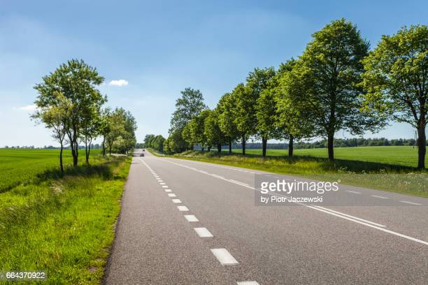 A spring road