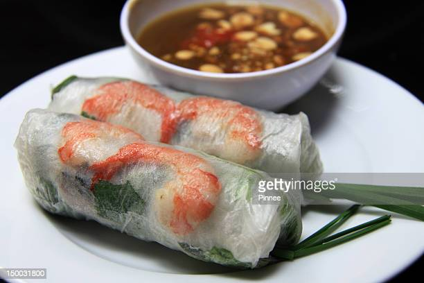 Spring rolls with vegie