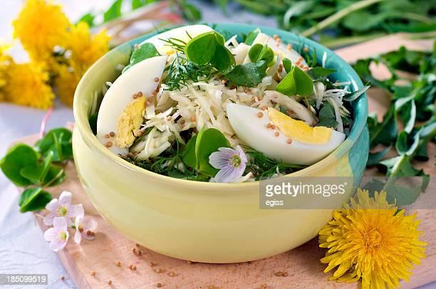 frühlings-salat - wildpflanze stock-fotos und bilder