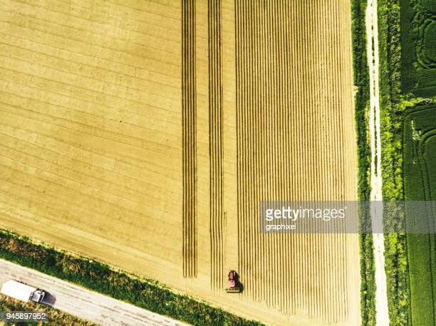 spring sowing season in turkey - parallel stock photos and pictures