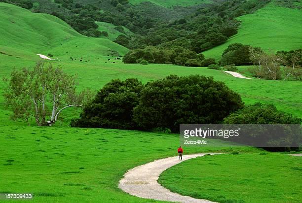 Spring time hike through the lush green hills