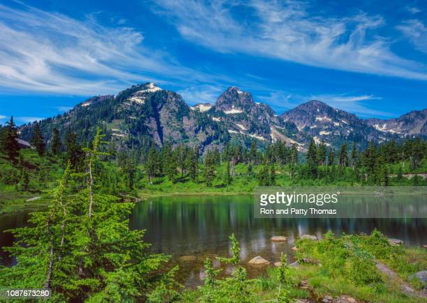spring time snow mt baker-snoqualmie national forest,wa - cascade range stock pictures, royalty-free photos & images