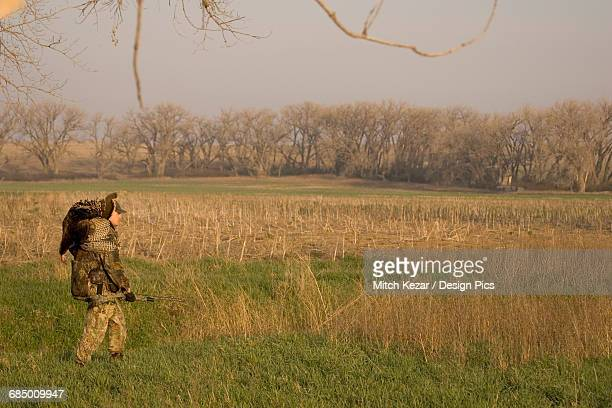 spring turkey hunter with turkey on shoulder - turkey hunting stock photos and pictures