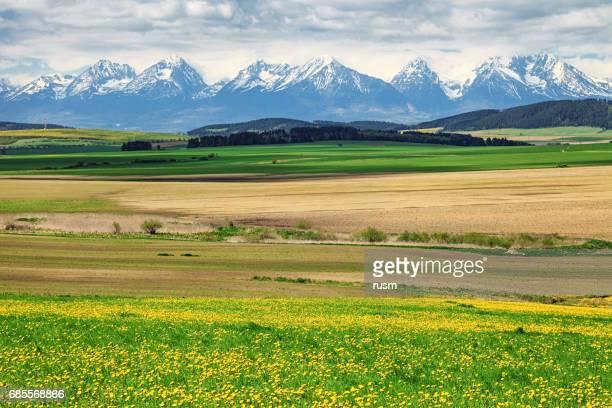 Spring view of High Tatras mountains, Slovakia
